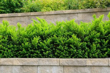 Landscaping - Retaining Walls